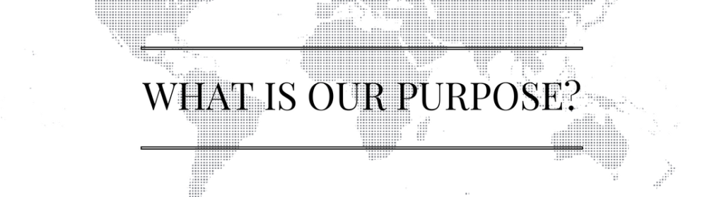 what-is-our-purpose